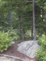 Miniature representation of a Maine Forest