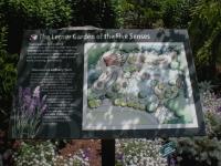 Map of Lerner arden of Five Senses