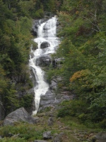 Within Crawford Notch